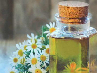Hướng dẫn cách sử dụng dầu mù u trị bỏng hiệu quả tại nhà